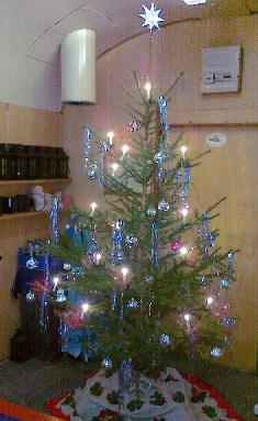 Weihnachtsbaum im BEM 2010