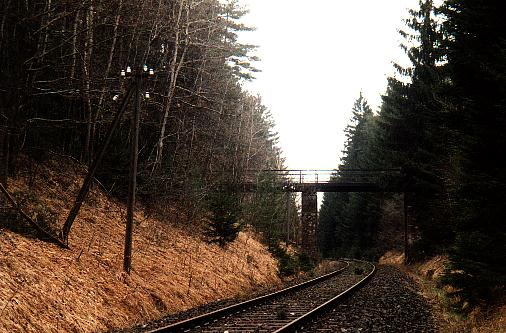 Brücke im Pfaffenholz  * Aufn. 2000