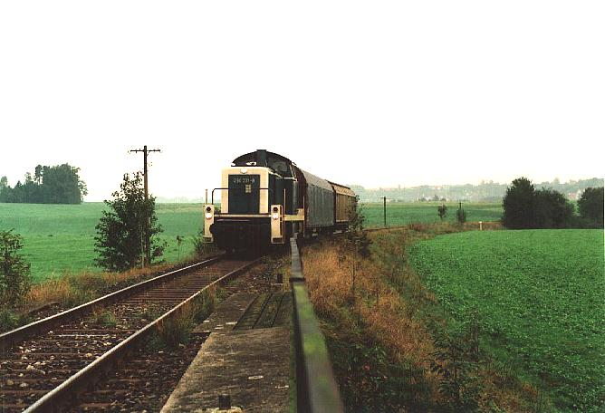 Brücke bei Kaltenbronn 4.10.1995