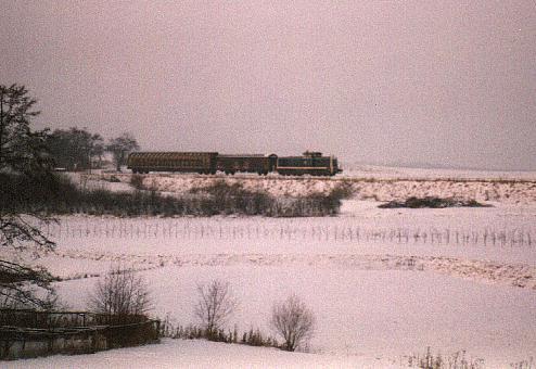 290er am Bahnübergang bei Deuenbach 1996/97